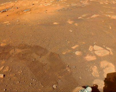 Perseverance en Marte: por qué sería una buena noticia que no descubriera vida en el planeta rojo