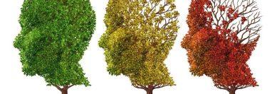 Los únicos medicamentos aprobados para el alzhéimer solo alivian algunos de los síntomas, parcial y temporalmente, pero no detienen el progreso de la enfermedad.