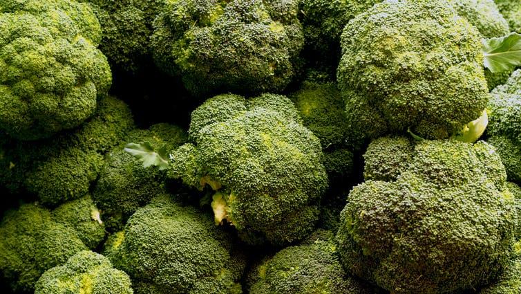 Por qué a las pacientes con endometriosis les beneficia comer brócoli