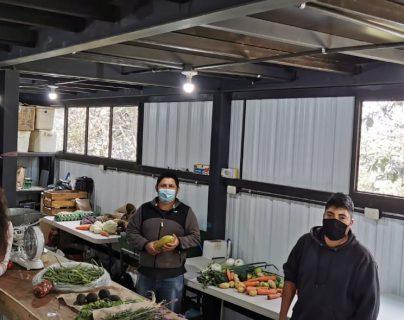 El programa de subvención agrícola que fortalecerá capacidades de pequeños productores