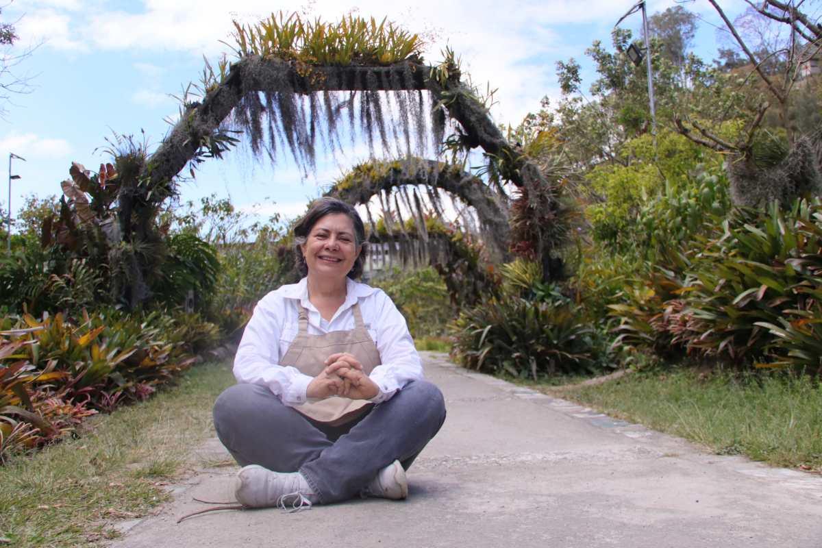 #CambioXelClima: Las orquídeas florecen en este sitio especial de la Ciudad de Guatemala
