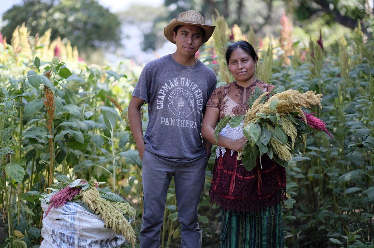 Guatemaltecos han encontrado en su camino a las Estrellas de Oportunidad