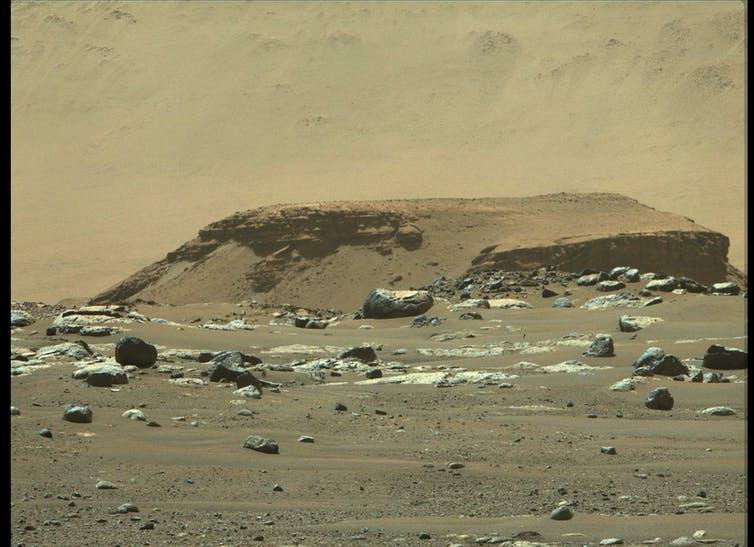 ¿Por qué sería buena noticia que no hubiera vida en Marte ni la hubiese habido nunca?