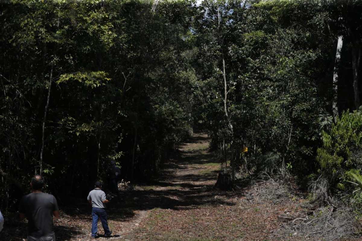 Reserva de la Biosfera Maya: Comunidades reciben ampliación de 25 años para el manejo del bosque