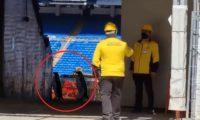 Dos pingüinos pasearon en las obras del estadio Santiago Bernabéu. (Foto Prensa Libre: Twitter)
