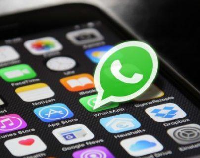 Así fue descubierto un profesor que vendía respuestas de examen por WhatsApp en una universidad en Italia