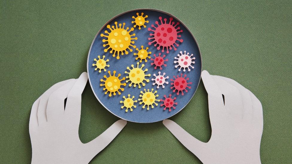 Origen del coronavirus: por qué es tan difícil determinar cómo surgió un virus