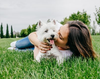 Tener perro o gato beneficia nuestra salud