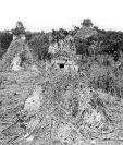 Mendez y Tut llegan a Tikal