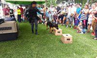 El programa se pondrá en marcha después de junio. Foto Prensa Libre: Mingob.