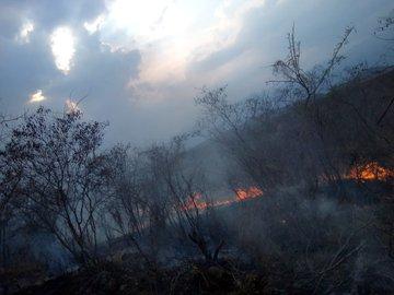 El 9 de abril se registró un incendio forestal en Zacapa. (Foto, Prensa Libre: Twitter Conred).