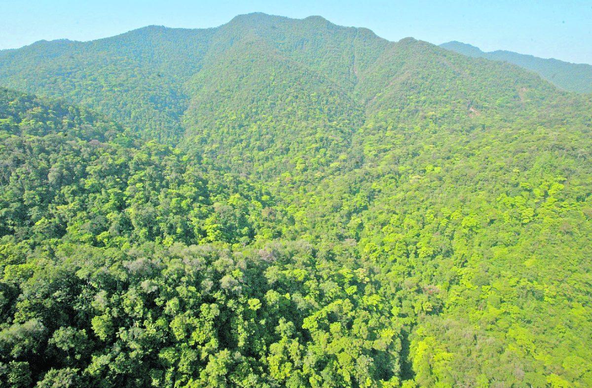 """""""Medio ambiente y desarrollo pueden ir de la mano de una manera responsable"""""""