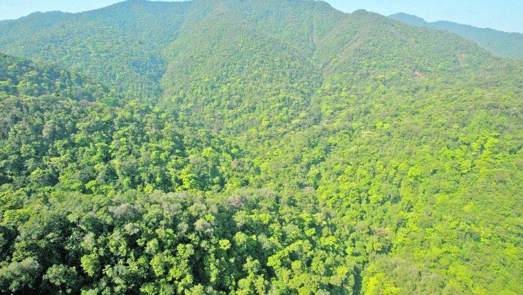 Guatemala es un país con riqueza de recursos ambientas y biodiversidad, y el desarrollo del país va de la mano de conservar dicha riqueza natural. (Foto Prensa Libre: Hemeroteca PL)