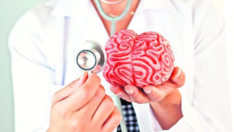 El sistema nervioso central se ve afectado cuando se inflaman las meninges, las capas membranosas que cubren el cerebro. (Foto Prensa Libre: Shutterstock).