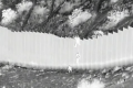 """La Casa Blanca, """"alarmada"""" por caso de niñas arrojadas desde muro fronterizo con México"""