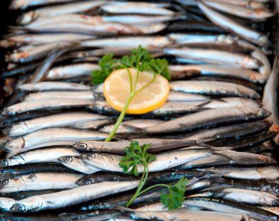 Más sardinas, menos diabetes