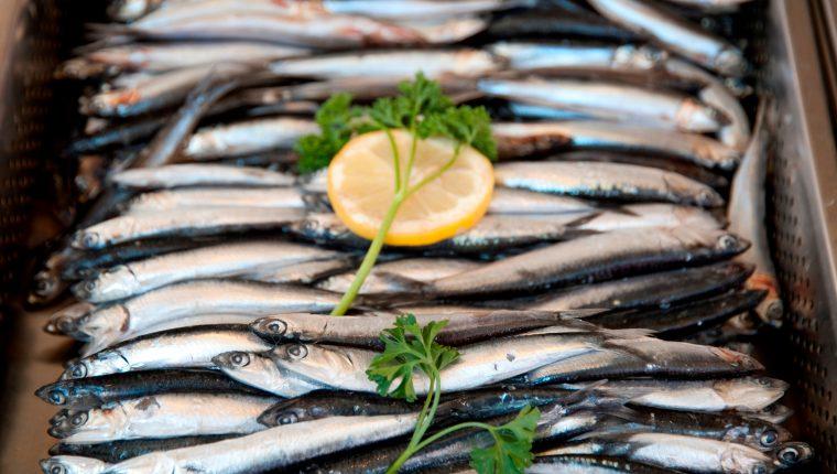 Las sardinas son un alimento de alto valor nutricional. Foto Prensa Libre: EFE/ IMEO