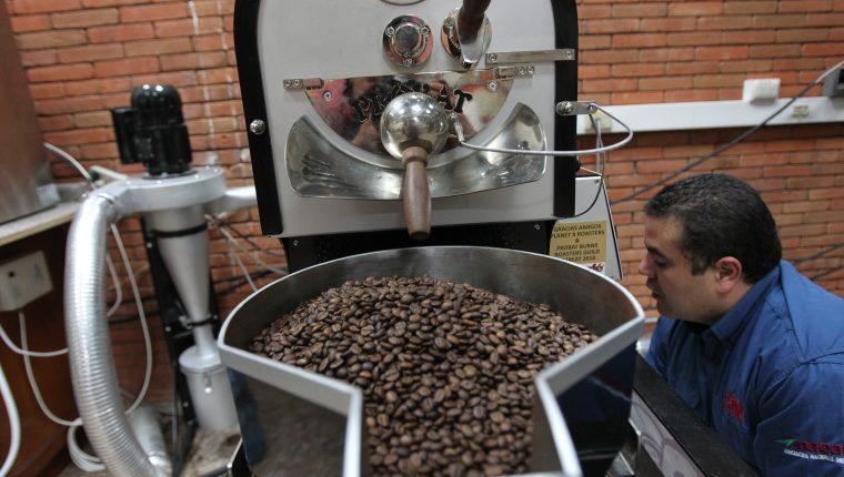 Se espera que las exportaciones de café se estabilicen en el mediano plazo, luego del impacto que provocó la falta de contenedores a nivel mundial y la pandemia que aún sigue vigente. (Foto Prensa Libre: Hemeroteca)