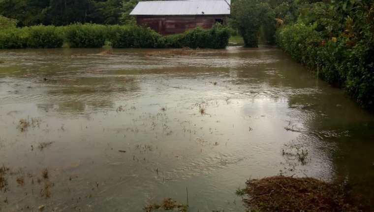 Vista de una de las áreas inundadas en Livington, Izabal, afectado por la lluvia. (Foto Prensa Libre: Conred)