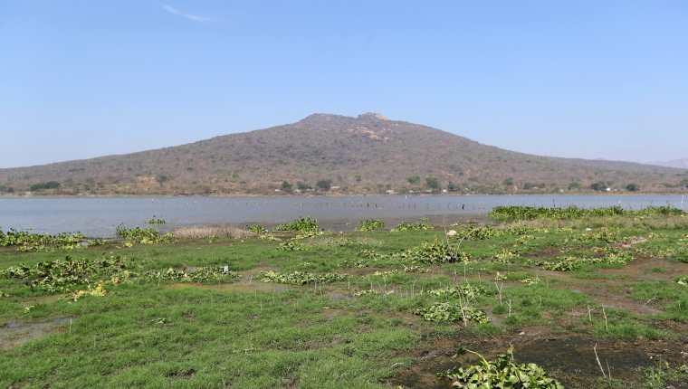 En la Laguna de Atescatempa, ubicada en Jutiapa, se observa maleza donde hace algunos años estaba cubierto por el agua.  Fotografía Prensa Libre: María Reneé Barrientos
