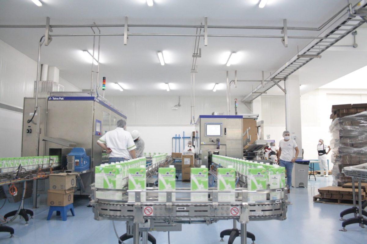Lo que pierde Guatemala por no poder exportar más productos lácteos hacia Honduras (y el trámite que lo detiene)