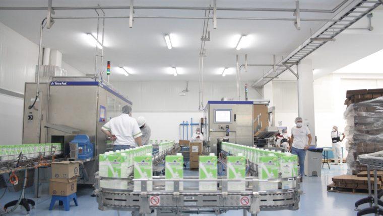 Las plantas de lácteos guatemaltecas se han modernizado y cuentan con tecnología y capacidad instalada. (Foto Prensa Libre: Cortesía CGAB y Asodel)