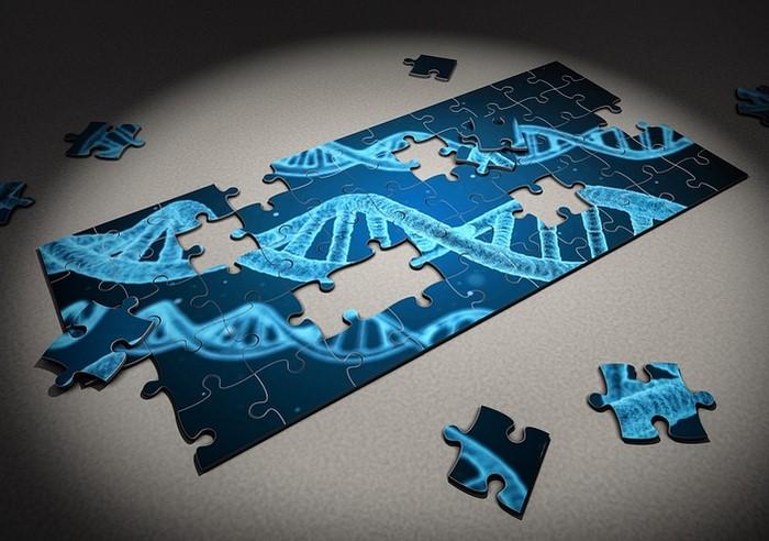 enfermedades de la piel genéticas