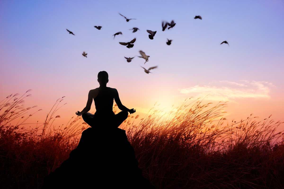 Yoga Fest: una actividad para todos