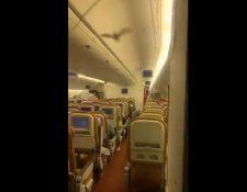 Murciélago en vuelo de Air India