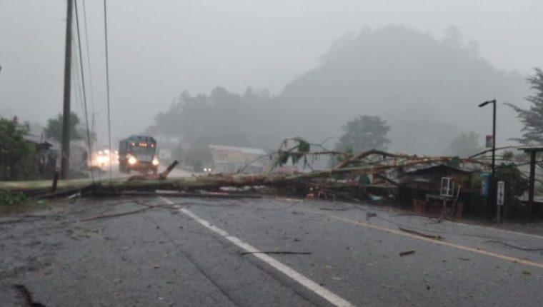 En Alta Verapaz, la caída de árboles afectó el tránsito. (Foto: Conred)
