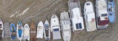 """Pequeños barcos de pesca no pueden navegar debido al """"moco de mar""""."""