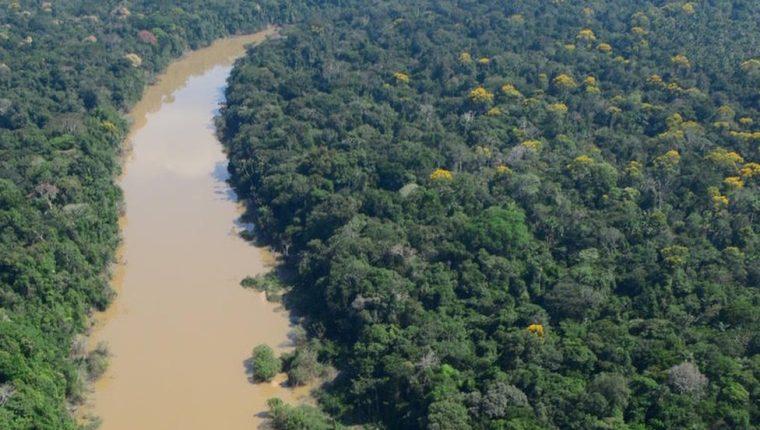 Los científicos estudiaron un área de la selva en el noreste de Perú.