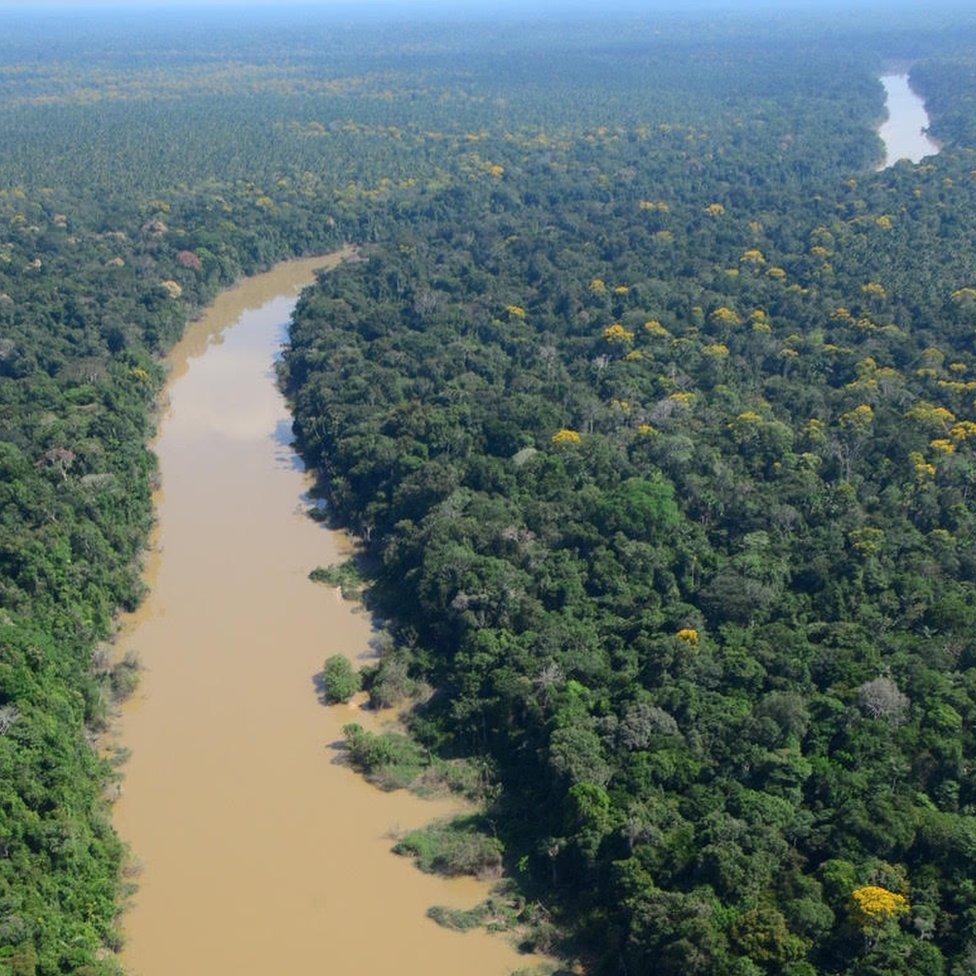 """Los habitantes de la Amazonía peruana vivieron """"de manera sostenible"""" durante más de 5.000 años"""