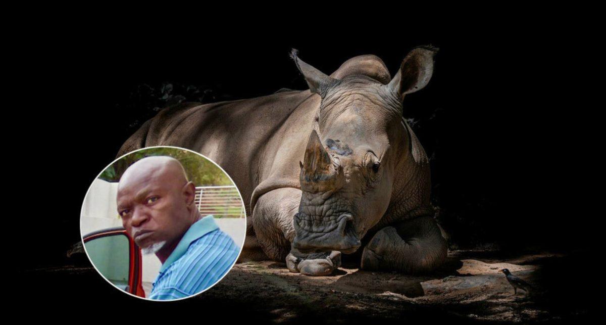 Matan a balazos al mayor cazador furtivo de rinocerontes en Sudáfrica y el ataque queda grabado