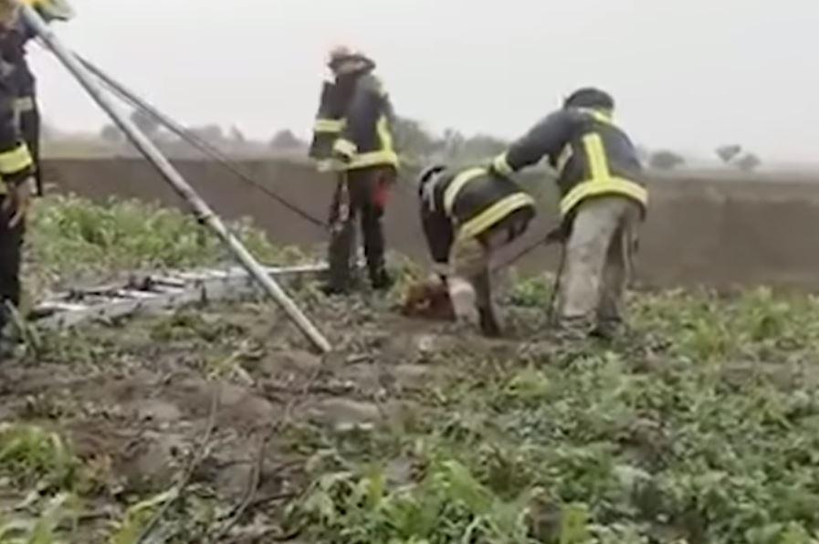 El momento en el que rescatan a Spay y Spike los perros que cayeron en el socavón en México