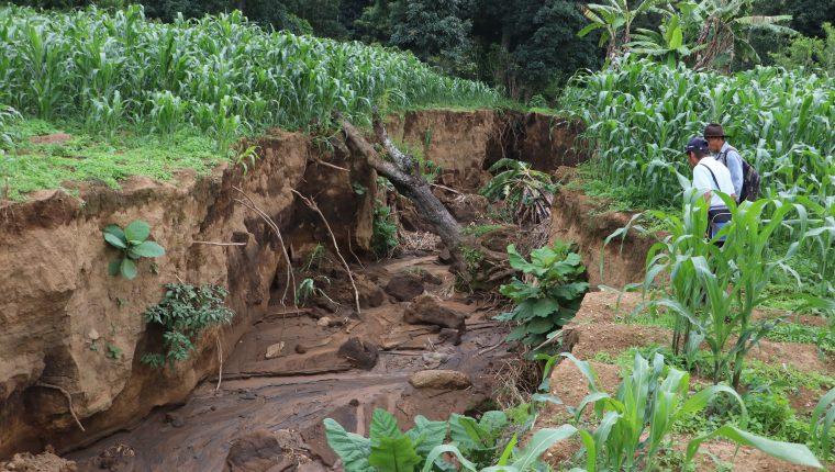 Los agricultores tienen pérdidas en sus siembras, debido a las cunetas mal construidas en el Libramiento de Chimaltenango. Foto Prensa Libre: Víctor Chamalé.