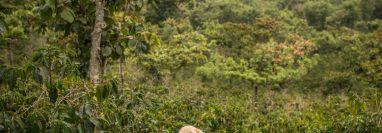 En Guatemala, los programas de ayuda no han cambiado la vida de los habitantes. (Foto Prensa Libre: The New York Times Company)