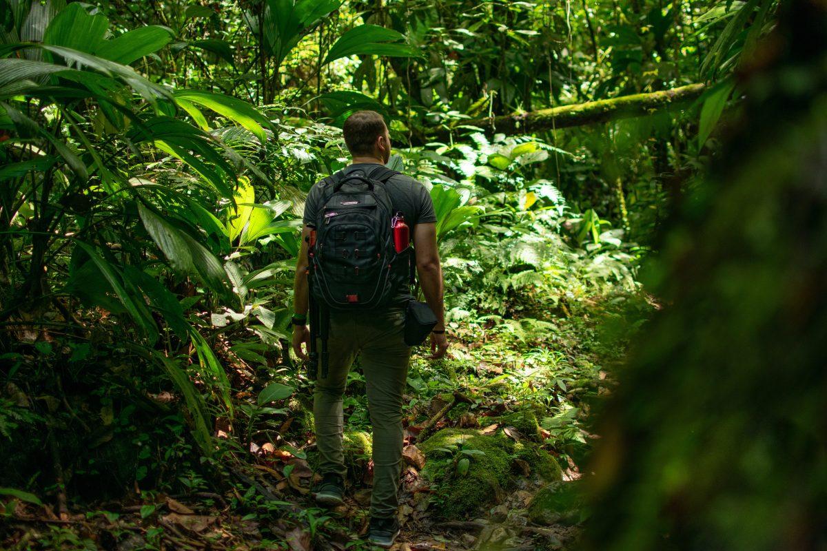 Qué es el ecoturismo y en qué se diferencia del turismo tradicional