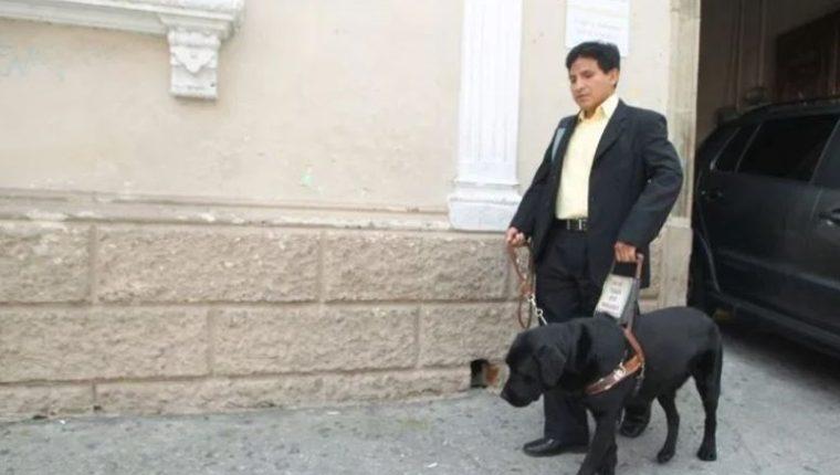 Perros guías podrán ingresar sin restricción a los centros deportivos que administra el Ministerio de Cultura. (Foto Prensa Libre: HemerotecaPL)