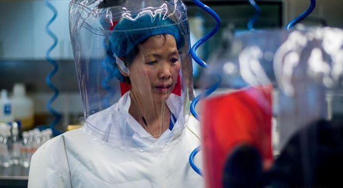 Viróloga de Wuhan rompe el silencio: esto dijo sobre la teoría de que el coronavirus escapó de su laboratorio