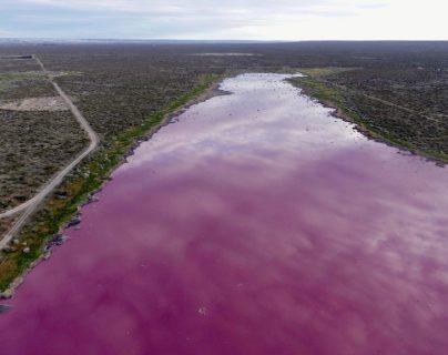 Estas son las controvertidas razones por las que unas lagunas se tiñeron de rojo en Argentina