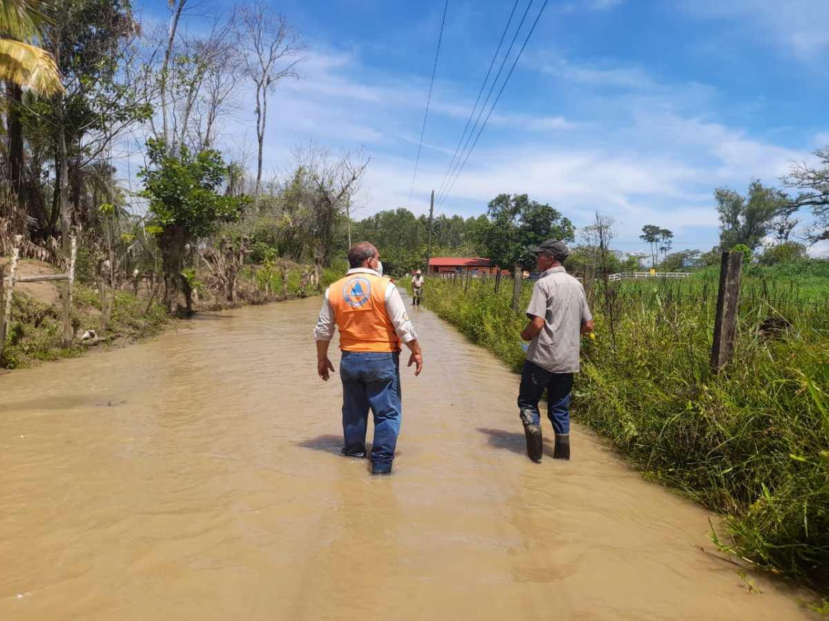 Lluvias dejan daños en productos agrícolas en inicio de canícula en julio