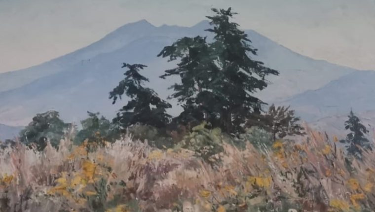 Isabel Timeus: Una huella en el paisajismo