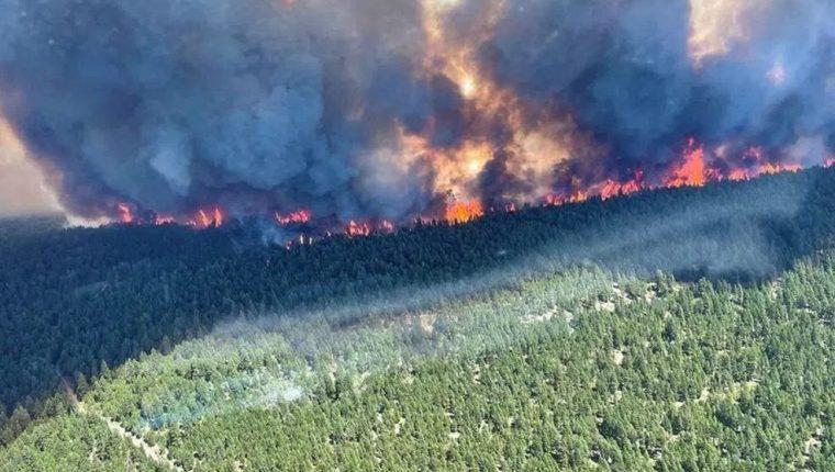 Un gigantesco incendio forestal en el Lago Sparks muestra uno de los efectos de la ola de calor. (Foto Prensa Libre: AFP)