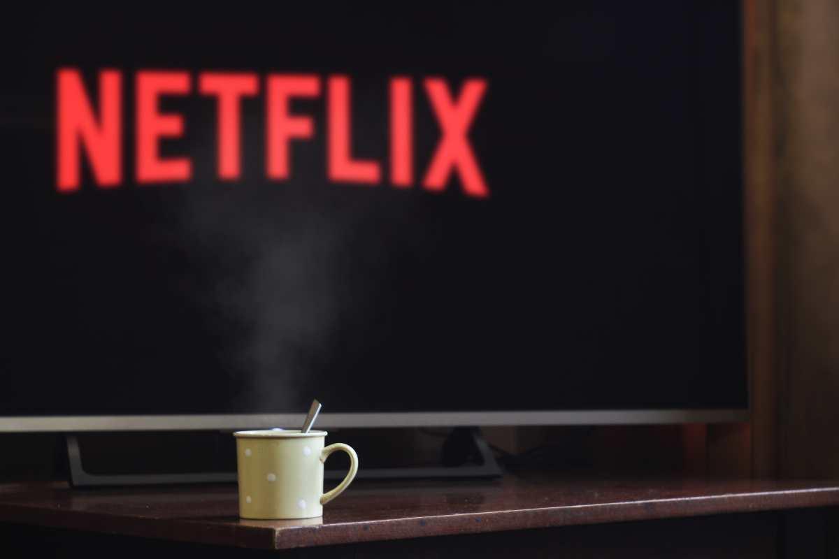 Netflix: estos son los estrenos para agosto 2021