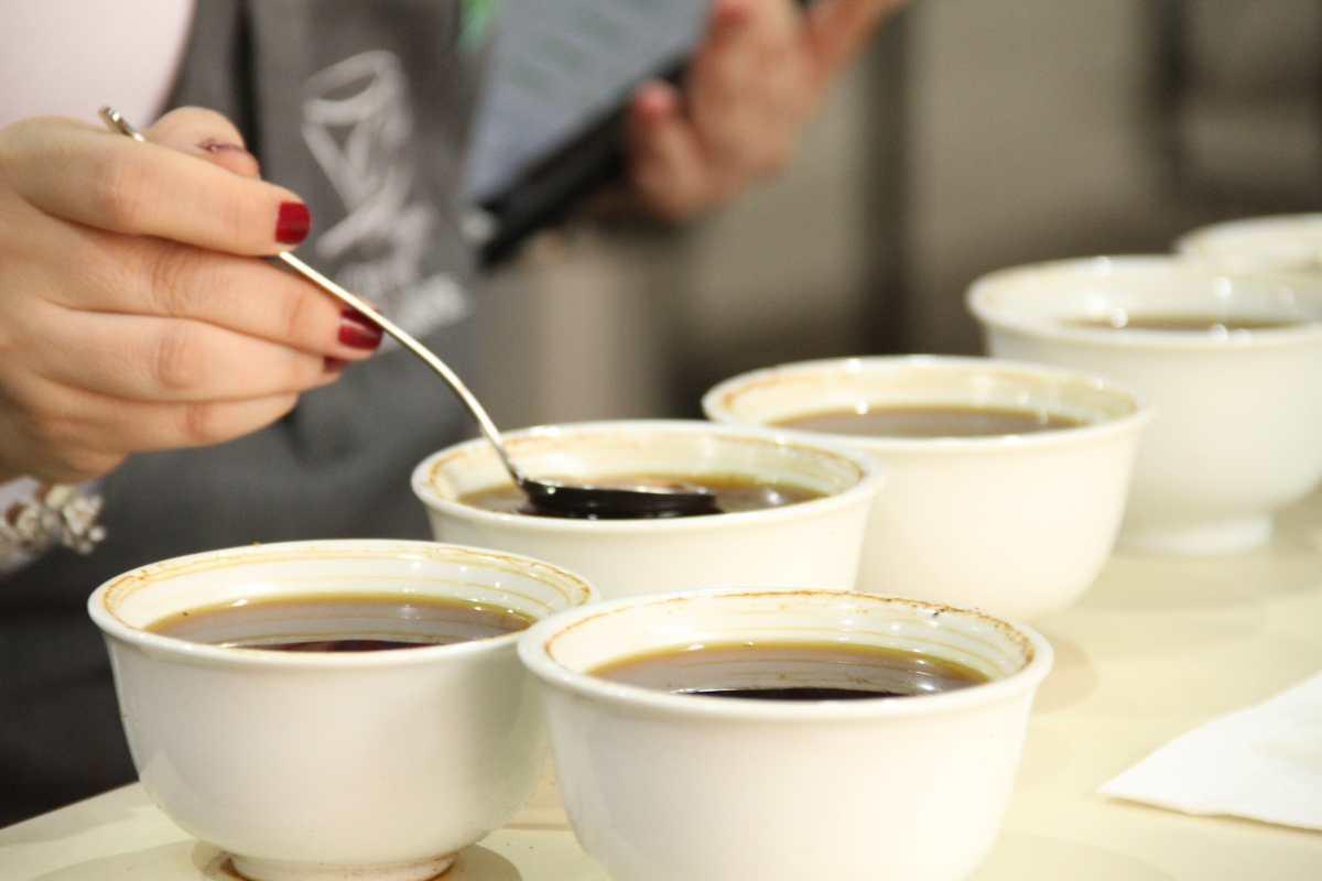 Estos son los cafés mejor cotizados en la subasta Cup of Excellence Guatemala 2021