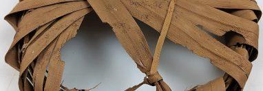 El artefacto de 2.100 años de antigüedad se encuentra actualmente en la Colección de Botánica Económica del Jardín Botánico de Londres, Kew Gardens.