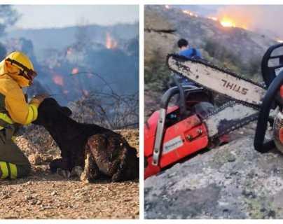 El valiente gesto de Iker Casillas: trabaja en la extinción del incendio en Ávila