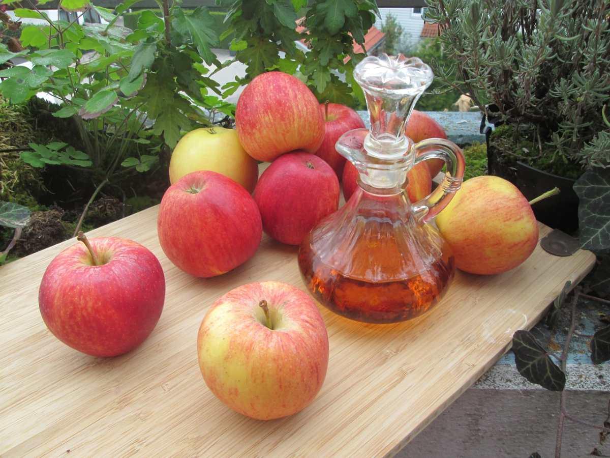 Vinagre de manzana: Beneficios comprobados para la salud y la pérdida de peso