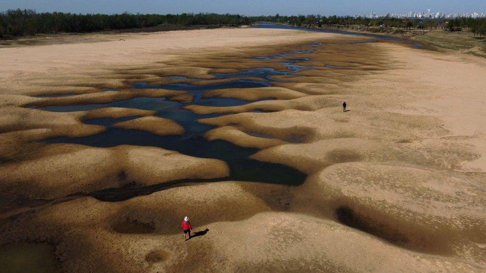 Las impactantes imágenes de la mayor sequía en 77 años del río Paraná, el segundo más largo de Sudamérica